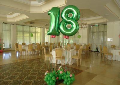 Compleanno_18_Anni 20